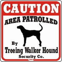 Treeing Walker Hound