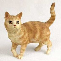 Orange Tabby Cat