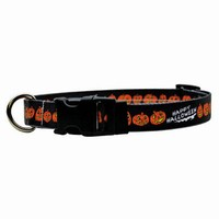 Halloween Collars and Leashes