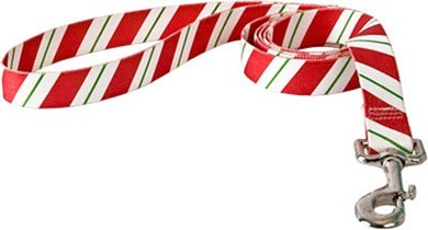 Raining Cats and Dogs | Peppermint Stick Leash