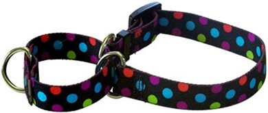 Raining Cats and Dogs | Gumballs Martingale Collar