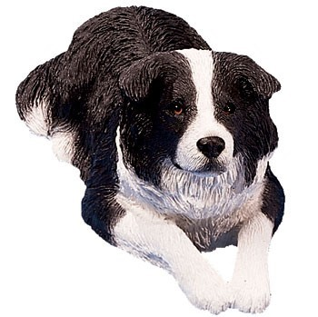 Raining Cats and Dogs | Border Collie Sandicast Original Figurine
