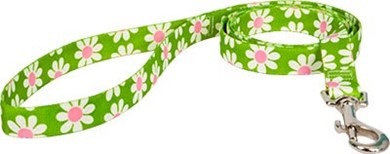 Raining Cats and Dogs | Green Daisy Leash