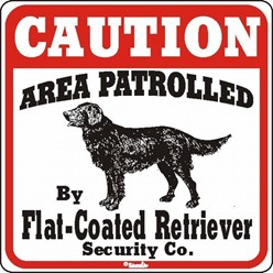Flat Coated Retriever Caution Sign, the Perfect Dog Warning Sign
