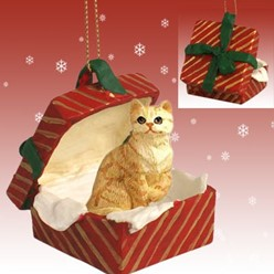 Red Tabby Cat Gift Box Christmas Ornament