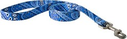 Bandana Print Leash