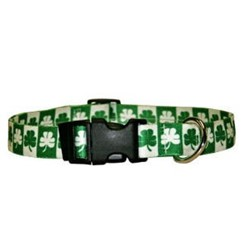 Shamrock Collar, the Perfect St. Patrick's Day Collar