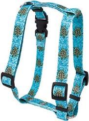 Sea Turtles Harness