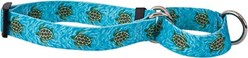 Sea Turtles Martingale Collar