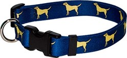 Yellow Labs Collar