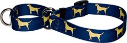 Yellow Labs Martingale Collar