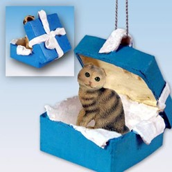 Scottish Fold Cat Gift Box Holiday Ornament