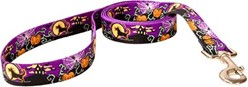 Scary Night Halloween Leash