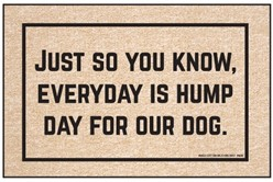 Everyday Hump Day Door Mat