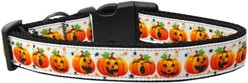 Pumpkin Parade Halloween Dog Collar