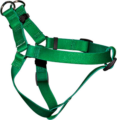 Step-In Harness Sample