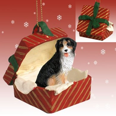 Raining Cats and Dogs | Bernese Mountain Dog Gift Box Christmas Ornament