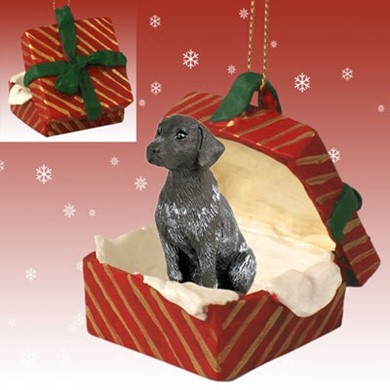 Raining Cats and Dogs | German Shorthaired Pointer Gift Box Christmas Ornament