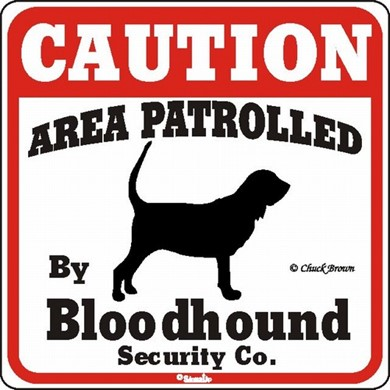 Raining Cats and Dogs | Bloodhound Caution Sign, the Perfect Dog Warning Sign