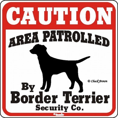 Raining Cats and Dogs | Border Terrier Caution Sign, the Perfect Dog Warning Sign
