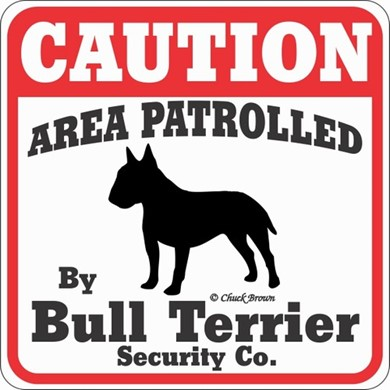 Raining Cats and Dogs | Bull Terrier Caution Sign,t he Perfect Dog Warning Sign