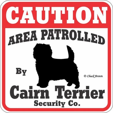 Raining Cats and Dogs | Cairn Terrier Caution Sign, a Fun Dog Warning Sign
