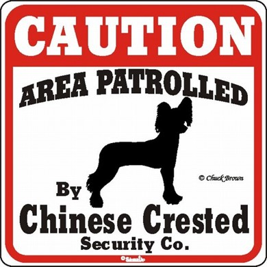 Raining Cats and Dogs | Chinese Crested Caution Sign, a Fun Dog Warning Sign
