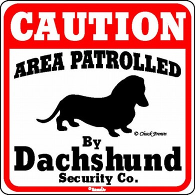 Raining Cats and Dogs | Dachshund Caution Sign, the Perfect Dog Warning Sign
