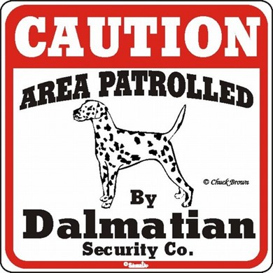 Raining Cats and Dogs | Dalmatian Caution Sign, the Perfect Dog Warning Sign