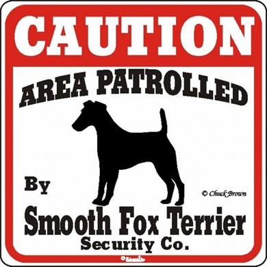 Raining Cats and Dogs | Smooth Fox Terrier Caution Sign, the Perfect Dog Warning Sign