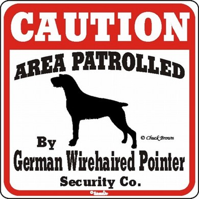 Raining Cats and Dogs | German Wirehaired Pointer Caution Sign, the Perfect Dog Warning Sign