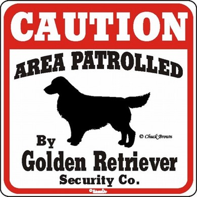 Raining Cats and Dogs | Golden Retriever Caution Sign, the Perfect Dog Warning Sign