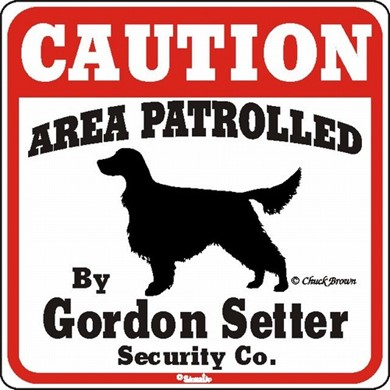 Raining Cats and Dogs | Gordon Setter Caution Sign, the Perfect Dog Warning Sign
