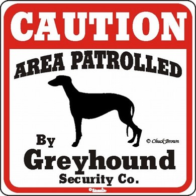 Raining Cats and Dogs | Greyhound Caution Sign, the Perfect Dog Warning Sign