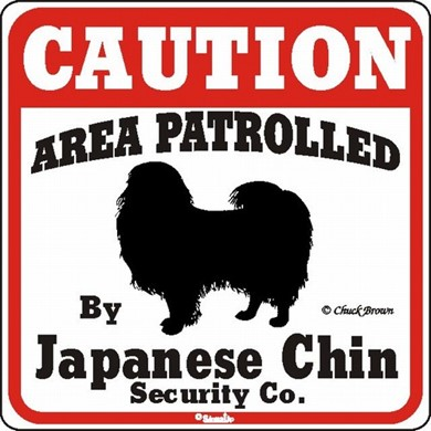 Raining Cats and Dogs | Japanese Chin Caution Sign