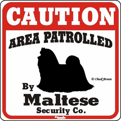 Raining Cats and Dogs | Maltese Caution Sign