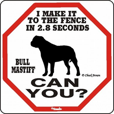 Raining Cats and Dogs | Bullmastiff Make It to the Fence in 2.8 Seconds Sign