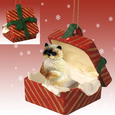 Raining Cats and Dogs | Ragdoll Cat Gift Box Christmas Ornament