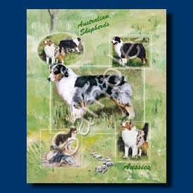 Raining Cats and Dogs | Australian Shepherd Gift Bag