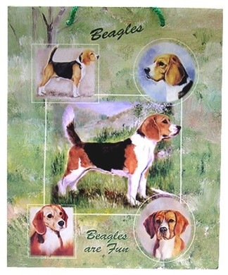Raining Cats and Dogs | Beagle Gift Bag