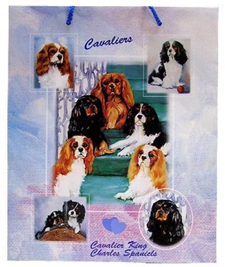 Raining Cats and Dogs | Cavalier King Charles Gift Bag