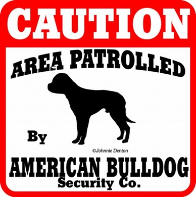 Raining Cats and Dogs | American Bulldog Caution Sign
