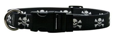 Raining Cats and Dogs | Skull Print Collar