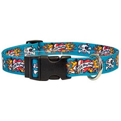 Raining Cats And Dogs Luv My Dog Blue Collar Made In
