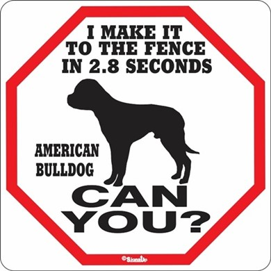 Raining Cats and Dogs | American Bulldog Make It to the Fence in 2.8 Seconds Sign