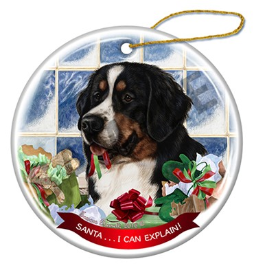 Raining Cats and Dogs | Bernese Mountain Dog Santa I Can Explain Ornament