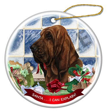 Raining Cats and Dogs | Bloodhound - Santa I Can Explain Ornament