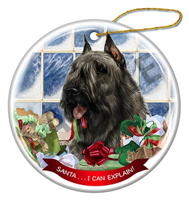 Raining Cats and Dogs | Bouvier Santa I Can Explain Christmas Ornament