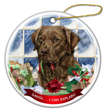 Raining Cats and Dogs | Santa I Can Explain Chesapeake Bay Christmas Ornament