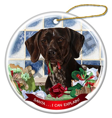Raining Cats and Dogs | Santa I Can Explain German Shorthaired Pointer Ornament